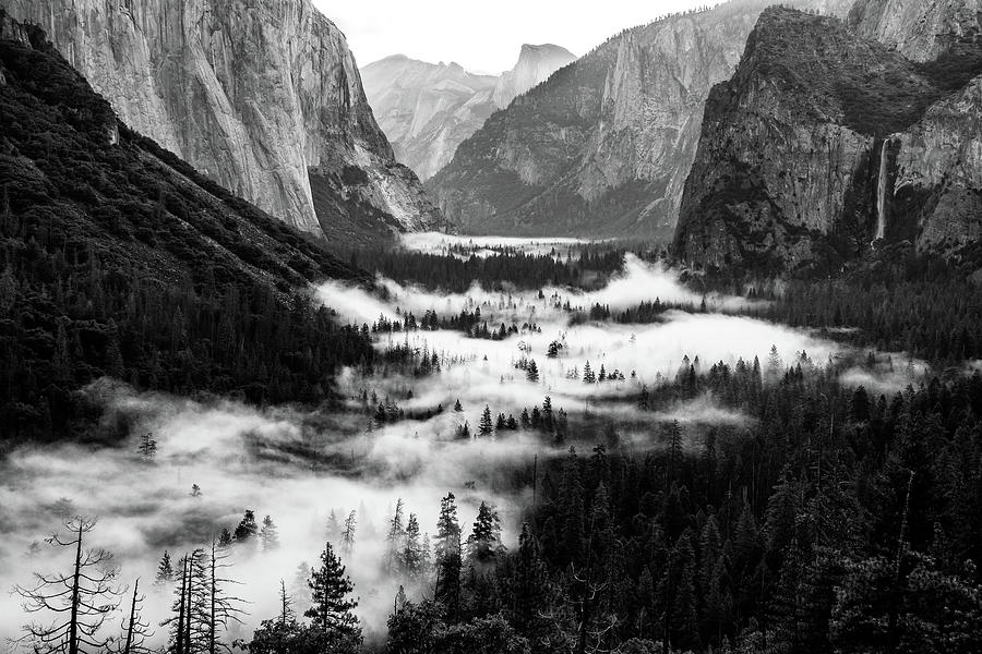 Yosemite fog 2 by Stephen Holst