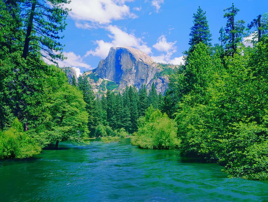 Yosemite National Park, Ca Photograph by Ron thomas