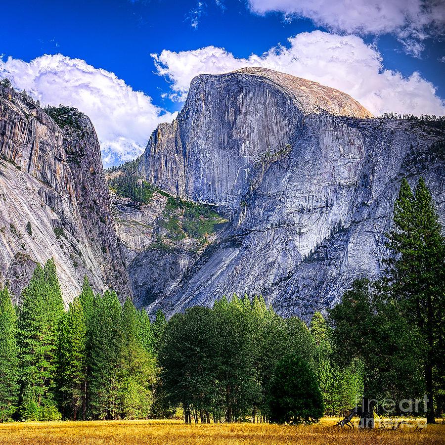 Capitan Photograph - Yosemite National Park California by Dancestrokes