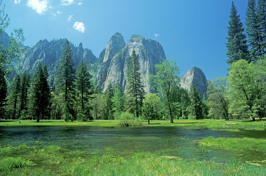 Yosemite National Park, California Photograph by Visionsofamerica/joe Sohm
