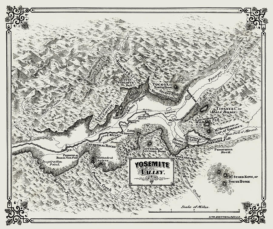 Yosemite Valley 1860 Antique Map by Phil Cardamone