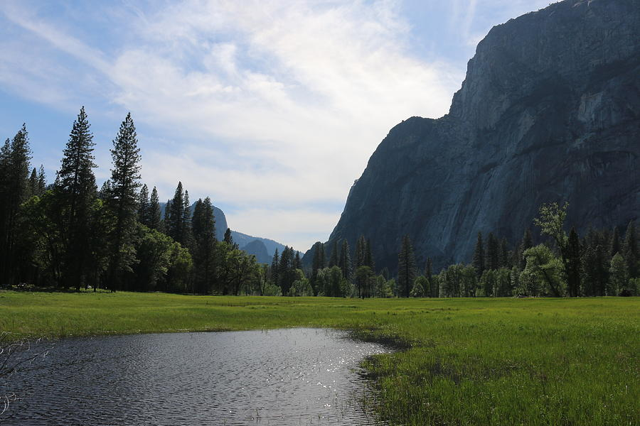 Yosemite Valley  by Christy Pooschke