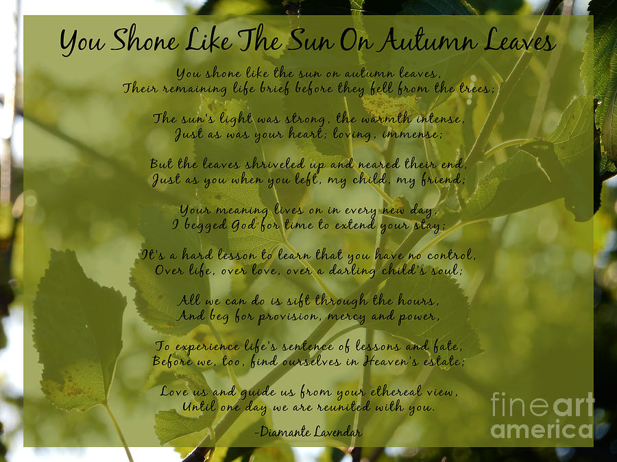 You Shone Like The Sun On Autumn Leaves Poem by Diamante Lavendar