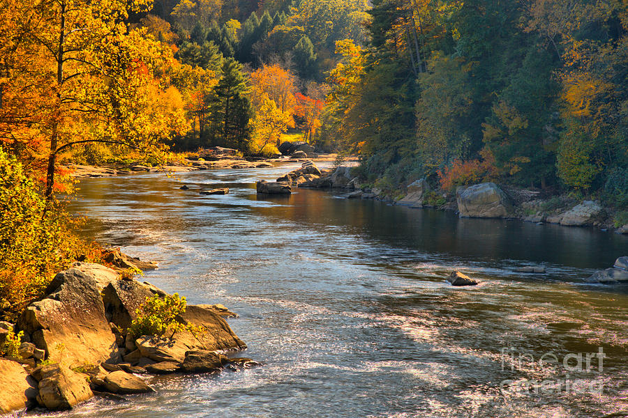 Youghiogheny River Fall Foliage by Adam Jewell