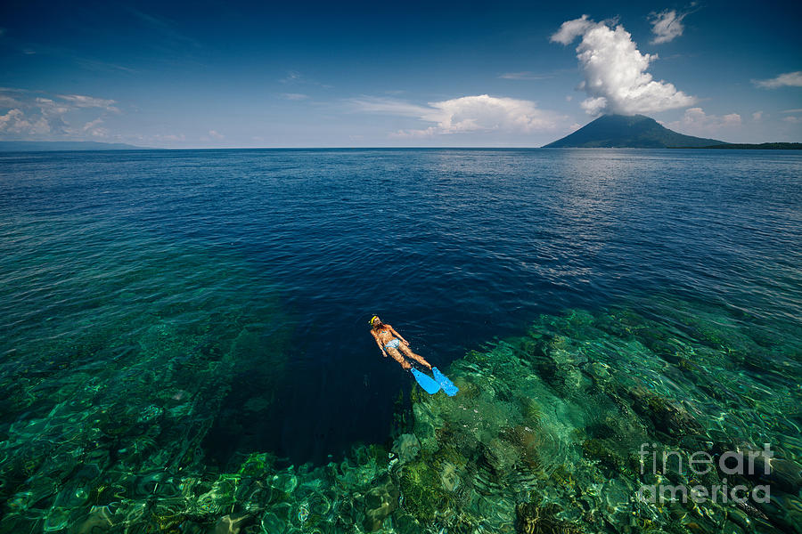 Sulawesi Photograph - Young Lady Snorkeling Over The Reef by Dudarev Mikhail