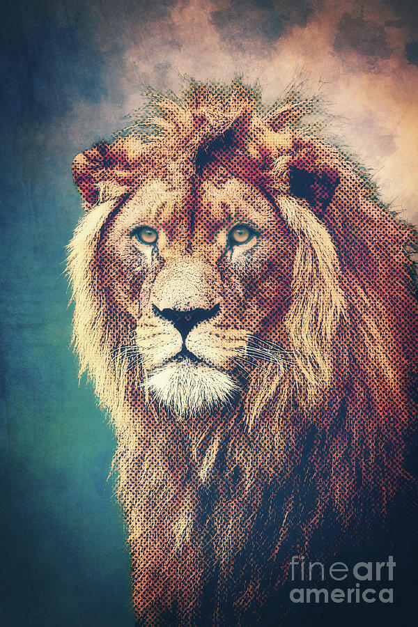 Young Lion by Angela Doelling AD DESIGN Photo and PhotoArt