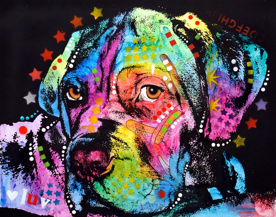 Dean Russo Painting - Young Mastiff by Dean Russo Art
