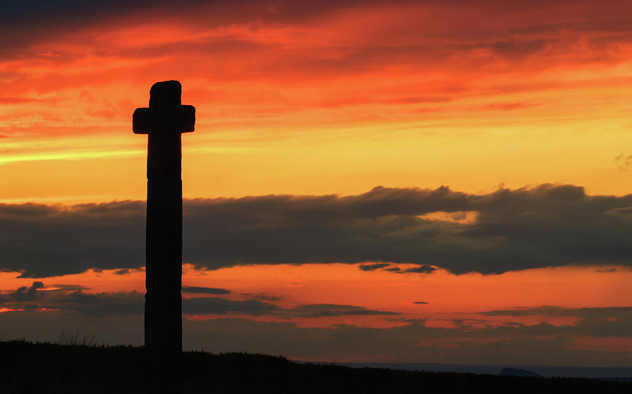 Britain Photograph - Young Ralph Cross at Sunset by David Ross