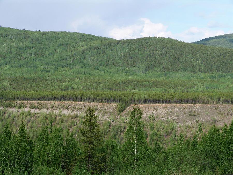 Yukon Canada Historic Site by Robert Braley