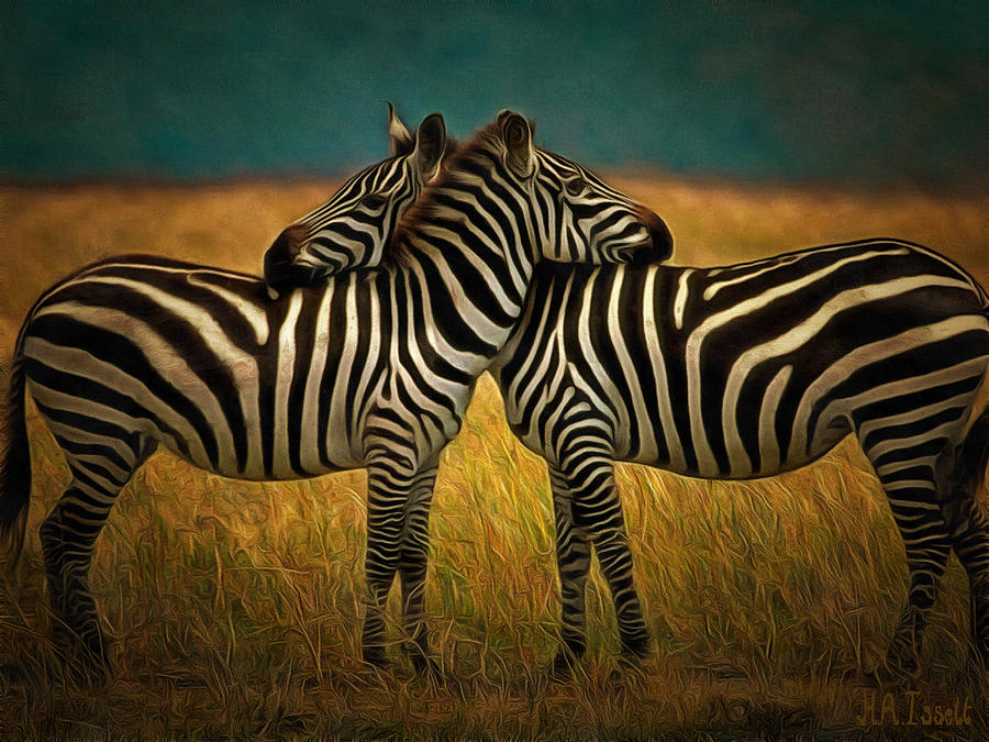 Zebra hug by Humphrey Isselt