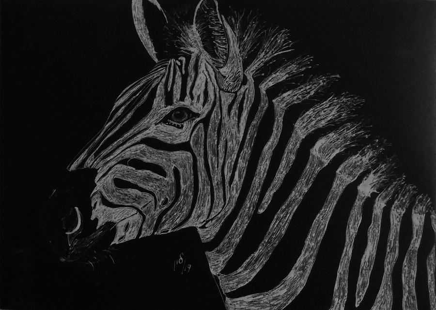 Zebra by Maria Woithofer