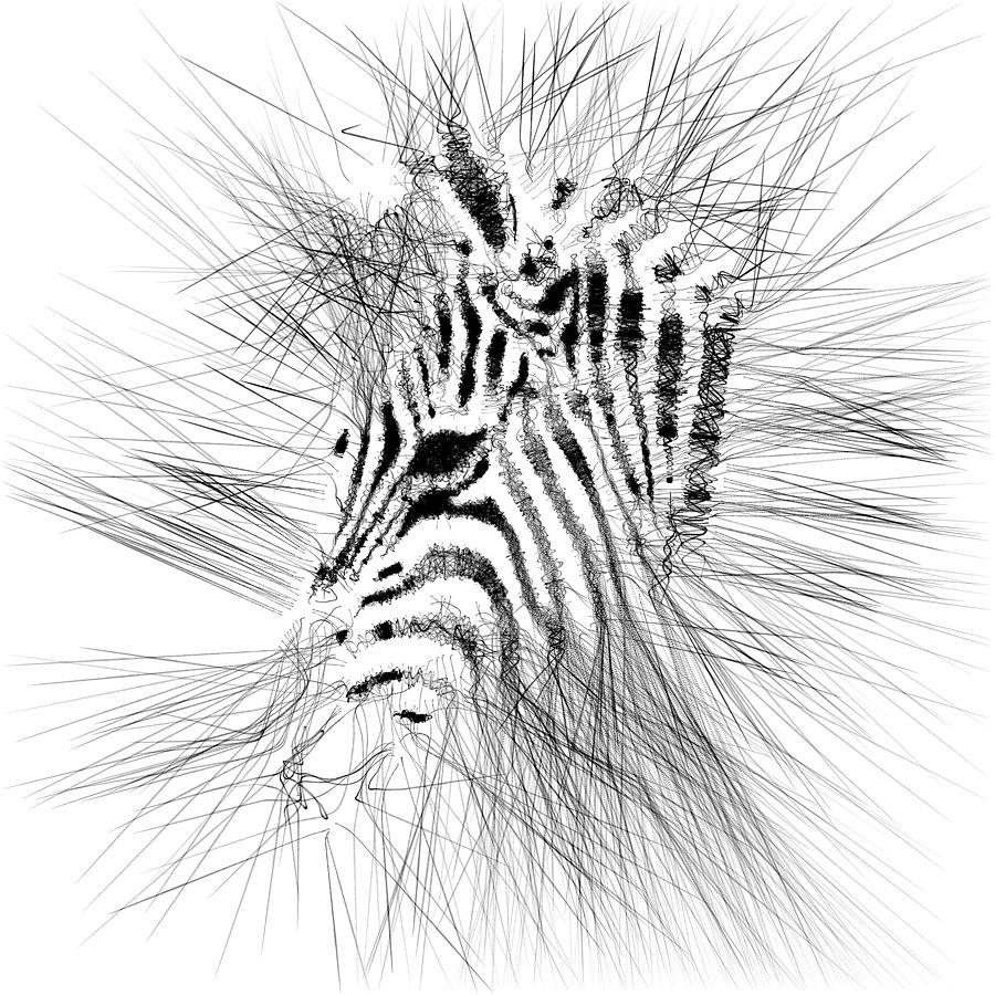 Zebrart Digital Art