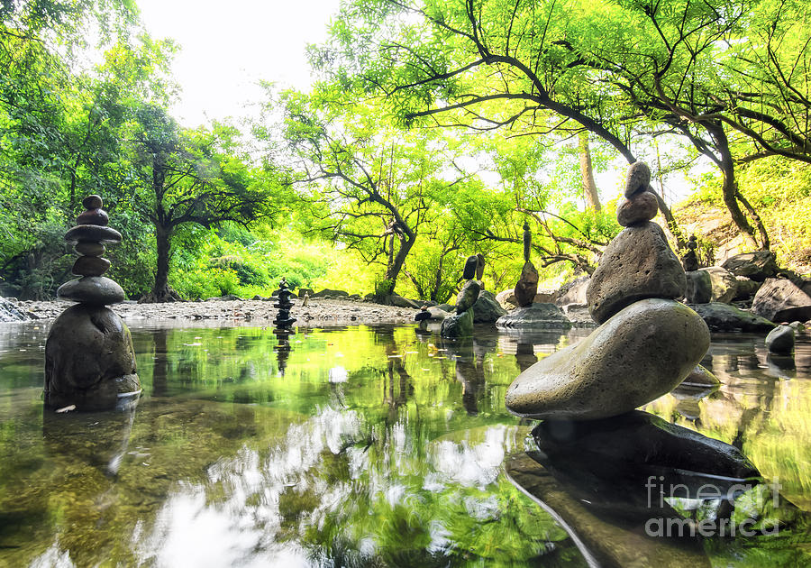 Harmony Photograph - Zen Pond In Forest. Photography Of by Banana Republic Images