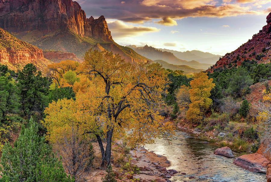 Autumn Photograph - Zion National Park Autumn by Leland D Howard