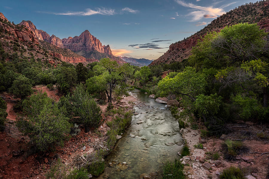 Zion Canyon Photograph - Zion Watchman by Dave Koch