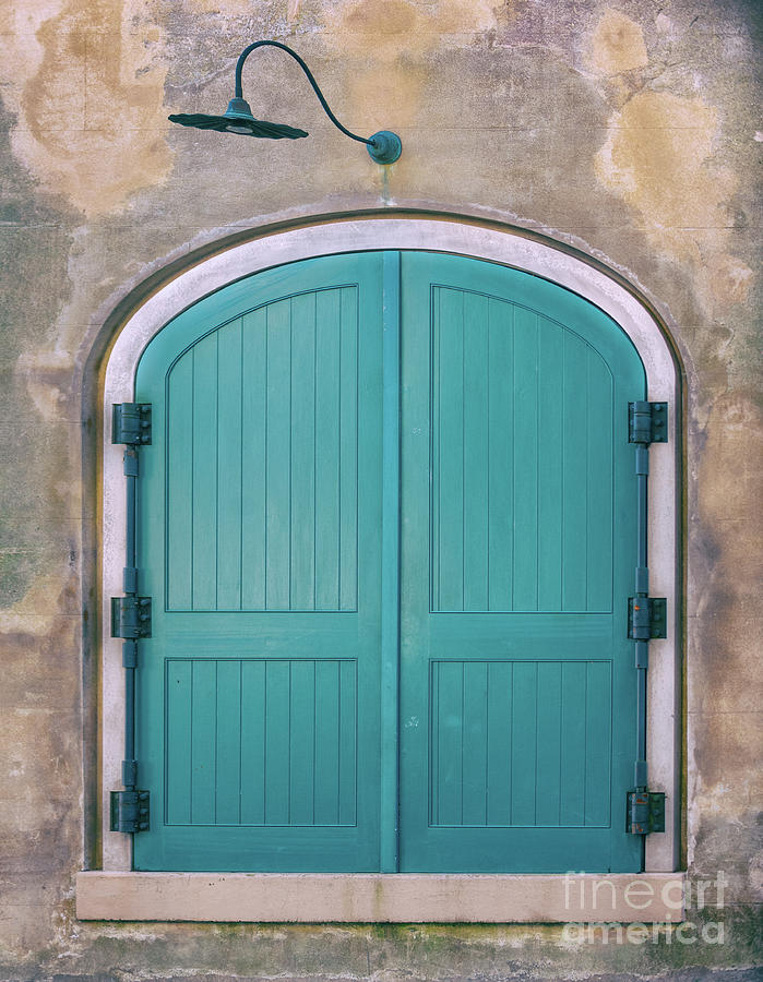 Turquoise Charleston Doors Photograph