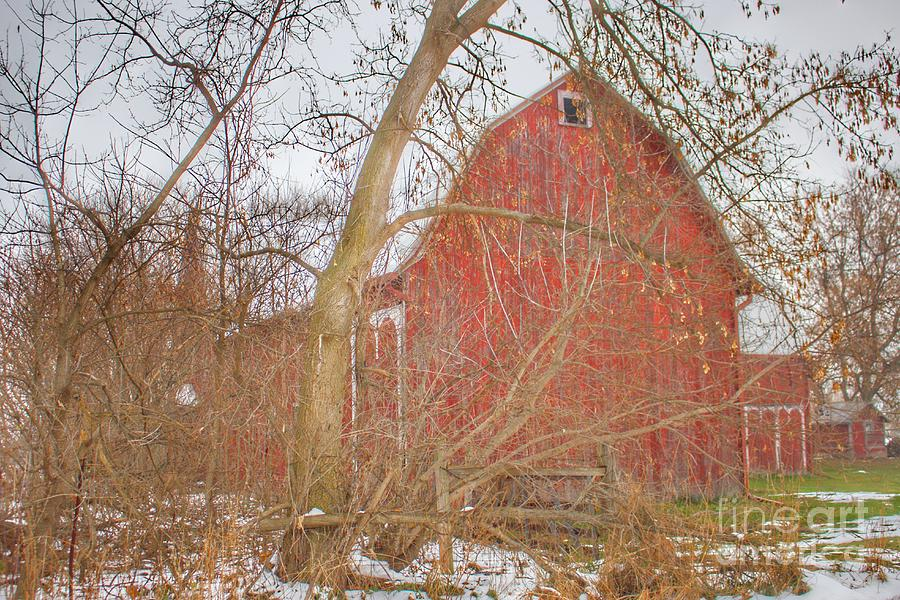 0762 - Holmes Road Red I  by Sheryl L Sutter