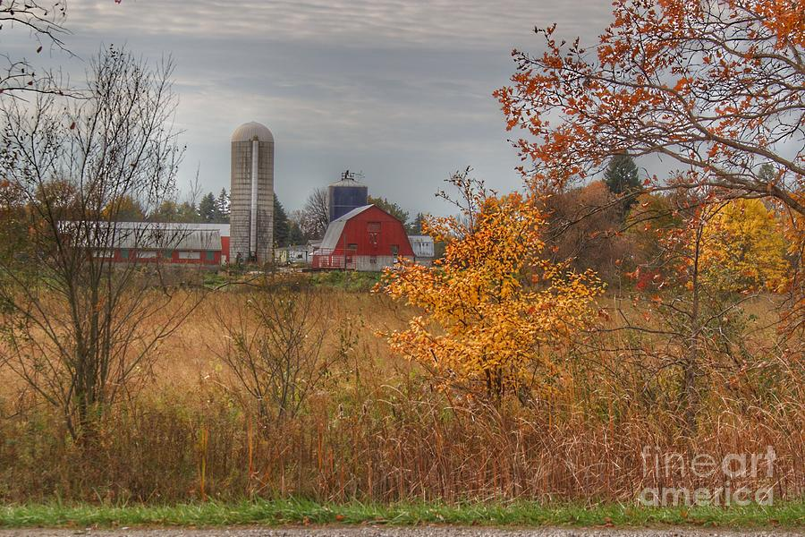 0750 - Vienna Road Red and Silo by Sheryl L Sutter