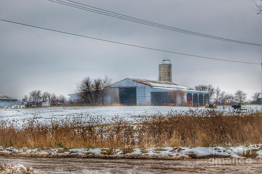 0751 - Noble Road Blue Cow Barn by Sheryl L Sutter