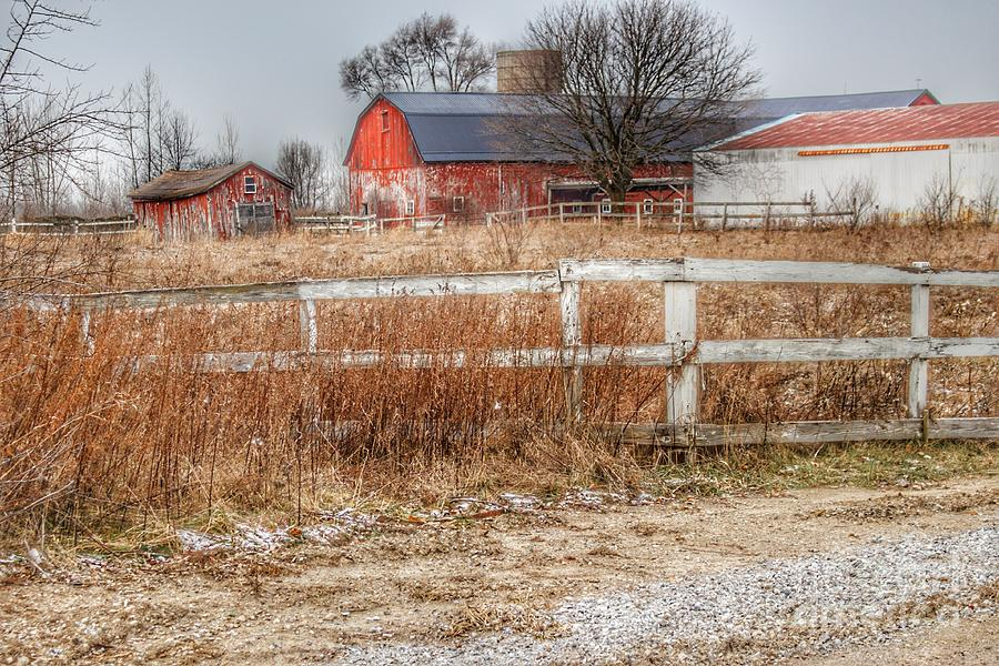 0787 - Mound Road Reds I by Sheryl L Sutter