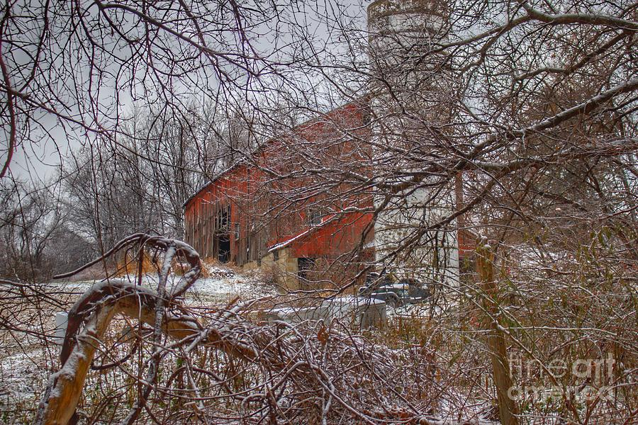 0789 - Sandhill Road's Hidden Red I by Sheryl L Sutter