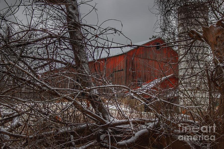 0790 - Sandhill Road's Hidden Red II by Sheryl L Sutter
