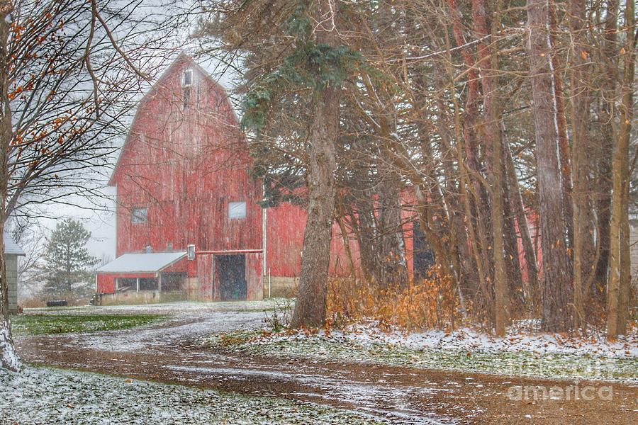 0799 - Tubspring Road's Hidden Winter Red by Sheryl L Sutter