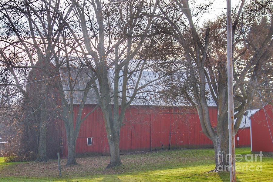 0801 - Vienna Road's Hidden Red by Sheryl L Sutter