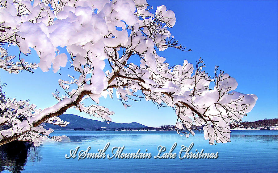A Smith Mountain Lake Christmas by James Roney