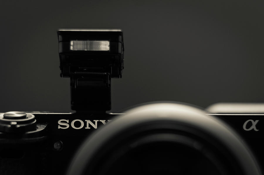 a6000 Sony by Wade Brooks