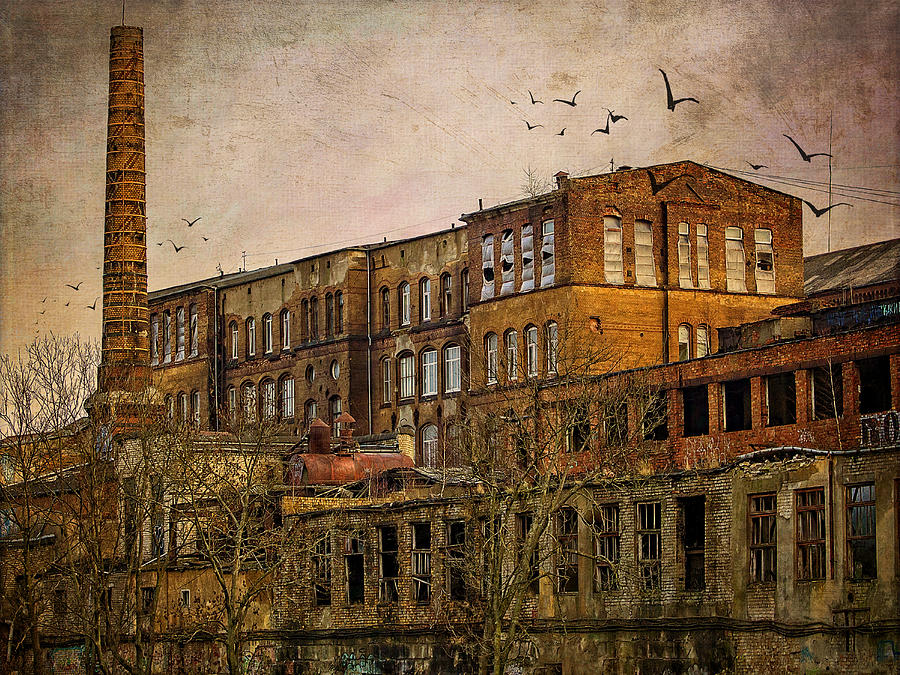 Abandoned Factory by Sandra Selle Rodriguez