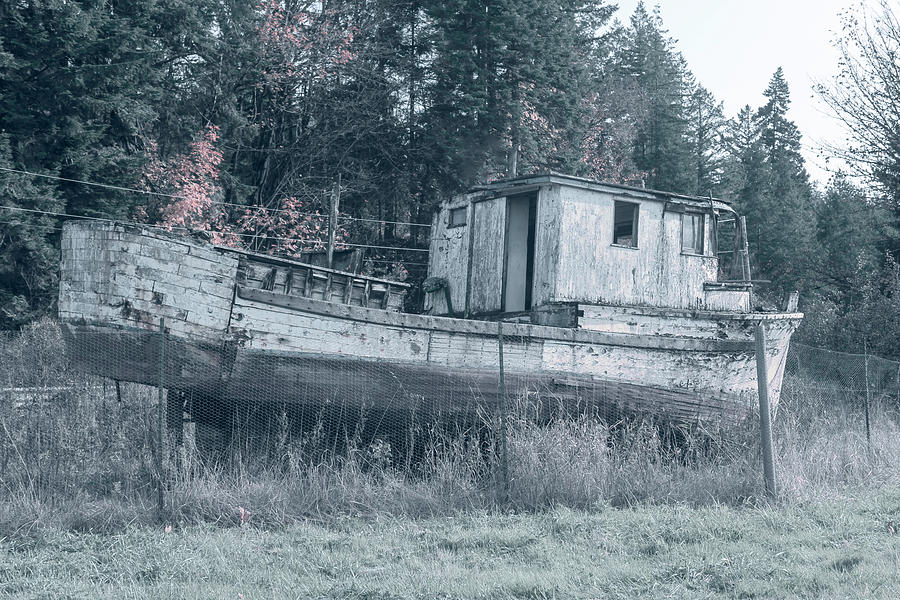 Abandoned Relic Boat  by Cathy Anderson