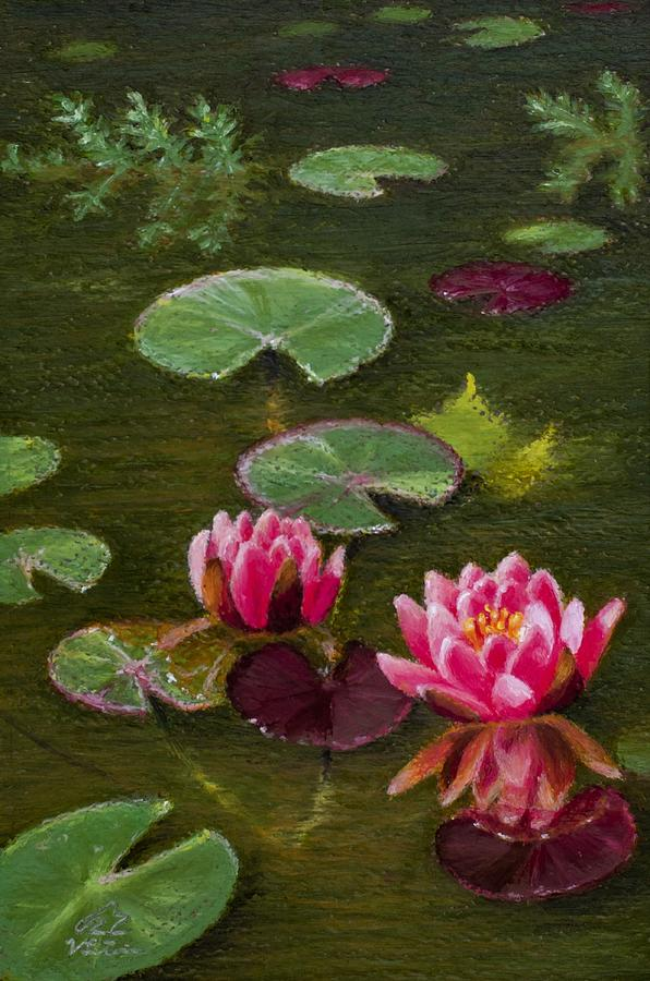 Among the Lilies print / calm, colorful vivid Summer pond scene  Painting by V Leigh Carr