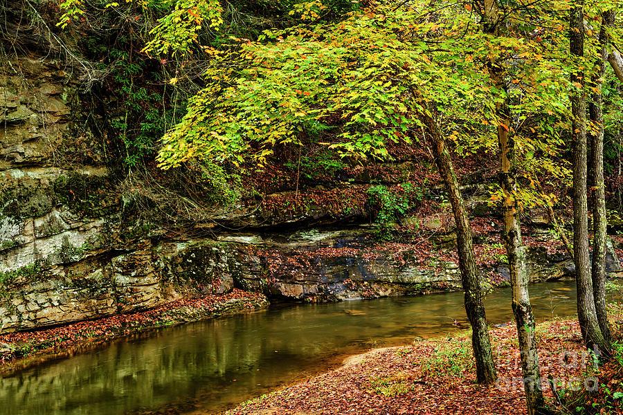 Autumn on Strange Creek by Thomas R Fletcher