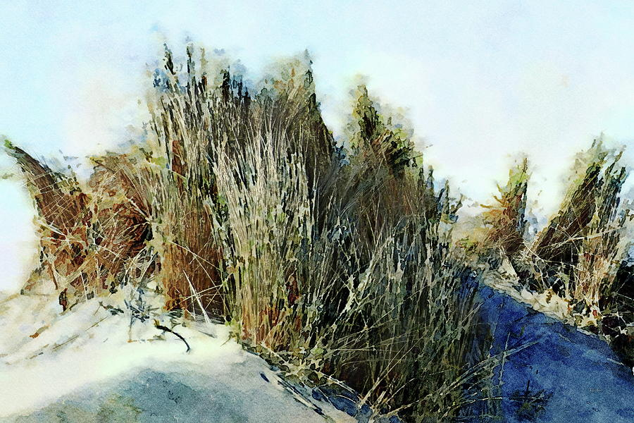 Beach Painting - Beach Grass by Russ Harris