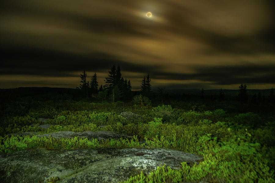 Bear Rocks Full Moon Photograph