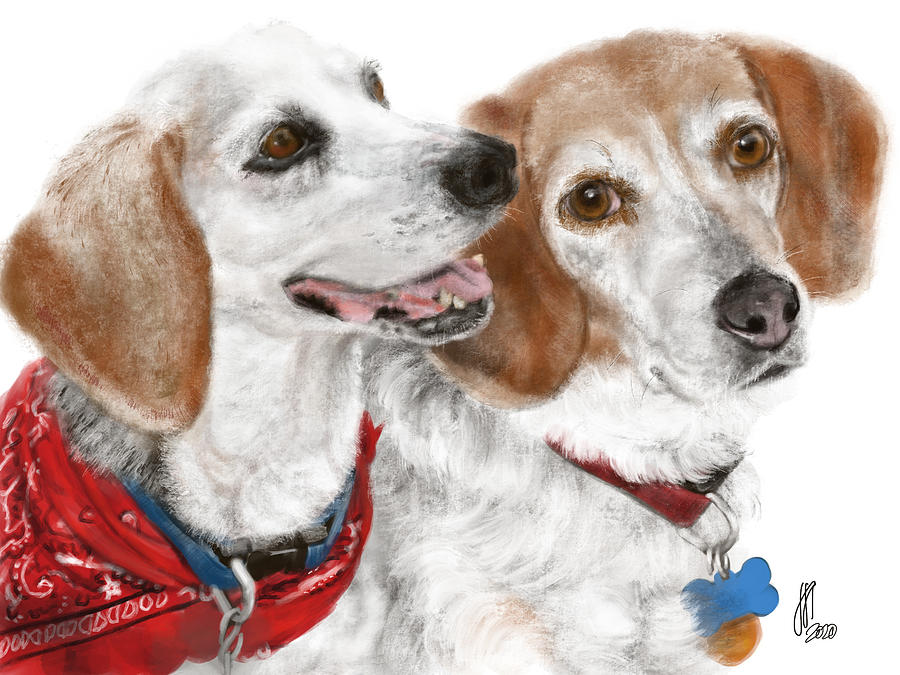 Dogs Digital Art - Best Friends  by Lois Ivancin Tavaf