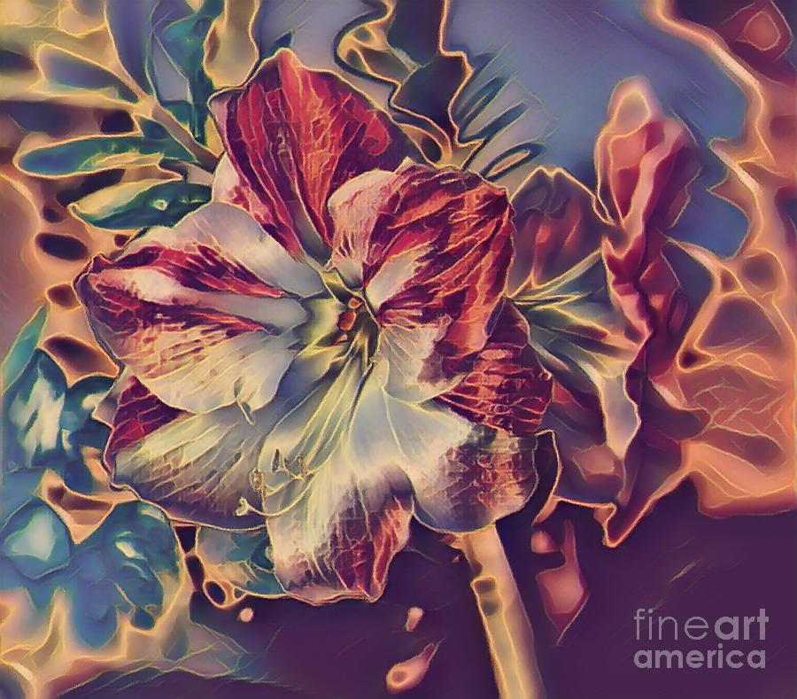 Blooming Amaryllis Digital Photograph