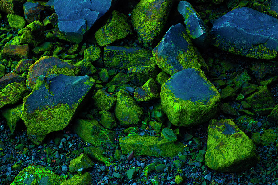 Blue and Green by Irwin Barrett