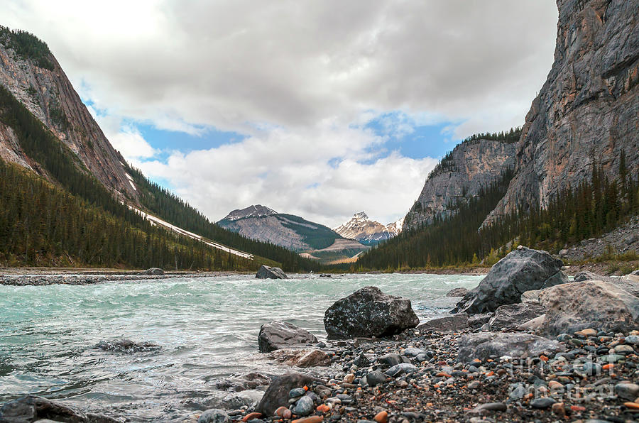 Bow River Photograph