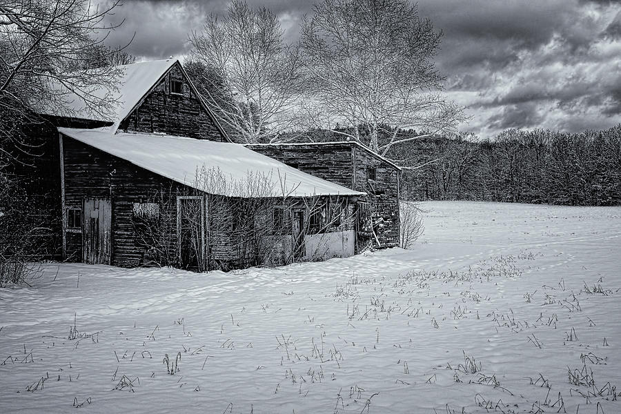 Brookline Barn by Tom Singleton