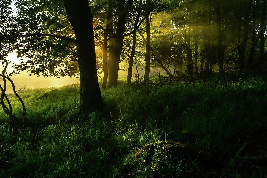 Canaan Sunrise Photograph