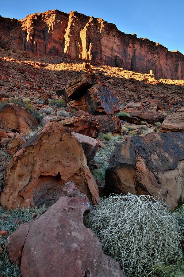 Utah Photograph - Canyon Walls along Colorado River in Utah by Ray Mathis