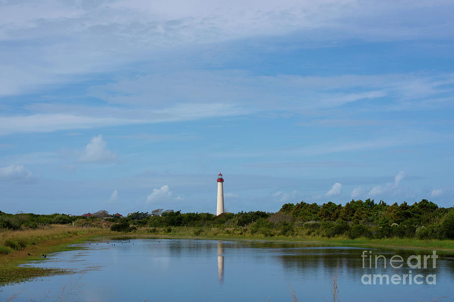 Cape May Light Reflections by Michael Ver Sprill