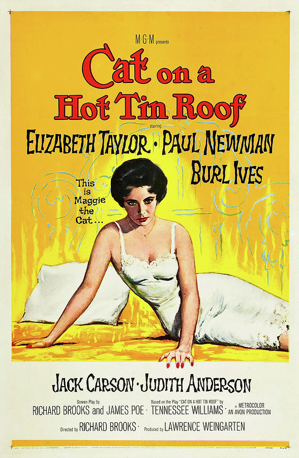 cat On A Hot Tin Roof Movie Poster 1958 Mixed Media