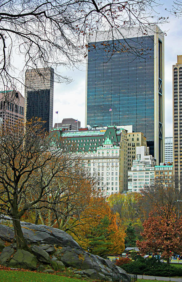 Central Park In Fall Photograph