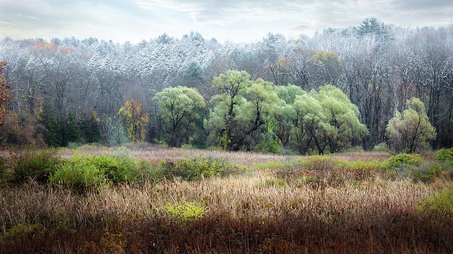 Changing Seasons by Bill Wakeley