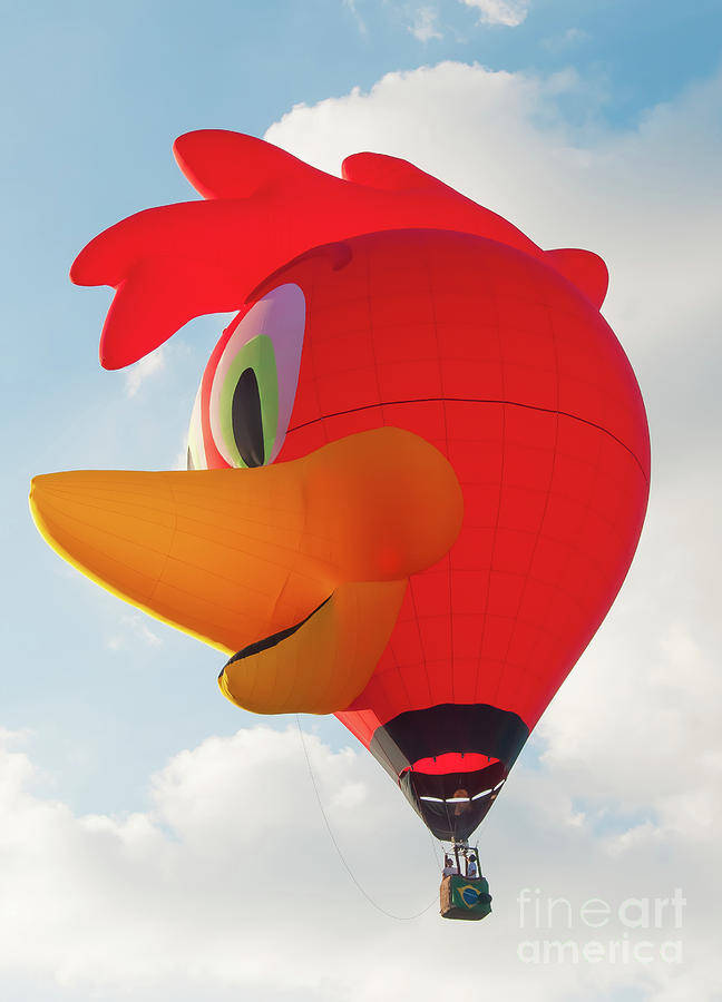 Chicken Hot Air Balloon. by Colin Rayner