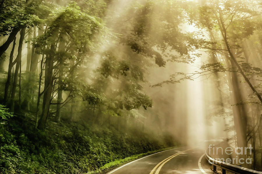 Country Road Rays of Light by Thomas R Fletcher