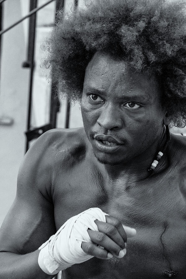 Cuban Boxer by Tom Singleton
